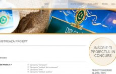 printscreen-website