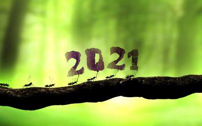 Ce se va întâmpla în 2021 cu reciclarea deșeurilor electrice în România?